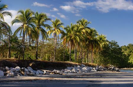 Sunny coastline in Costa Rica. Latin America Stock Photo