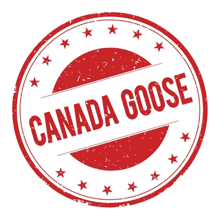 canada goose: CANADA-GOOSE stamp sign text word logo red. Stock Photo