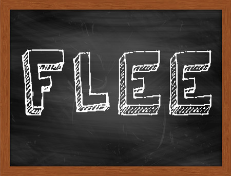 flee: FLEE  hand writing text on black chalkboard