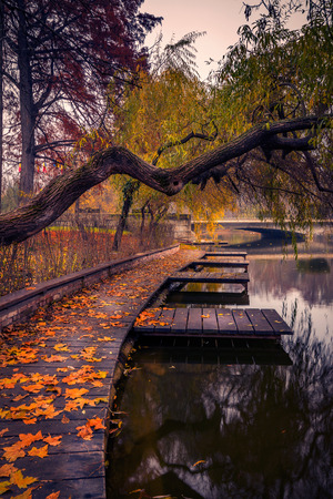 Autumn in Carol park in Bucharest near the lake with leaves on the ground and wooden pontoon