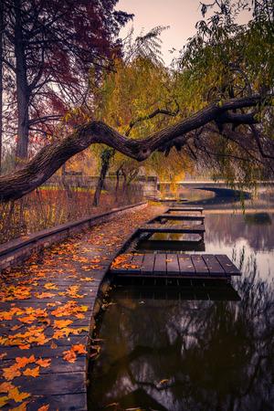 Herbst im Carol Park in Bukarest nahe dem See mit Blättern auf dem Boden und hölzernem Ponton Standard-Bild