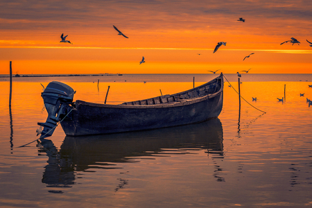 Detail of flying gulls birds above a lake with a motorized fishing boat in the foreground shot at sunrise in Romania during springtime Imagens