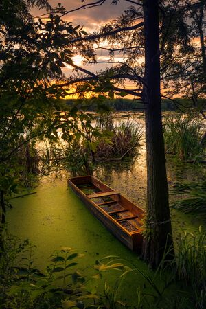 Small wooden boat chained to a tree on a lake at sunrise or sunset