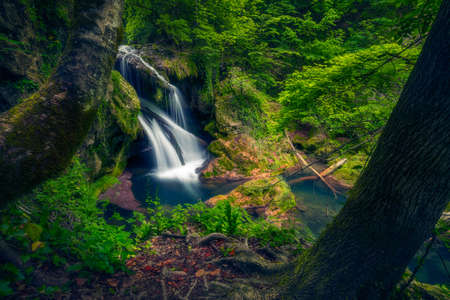 Vaioaga waterfall big waterfall in Nera gorges Cheile Nerei in Romania framed between two trees 스톡 콘텐츠