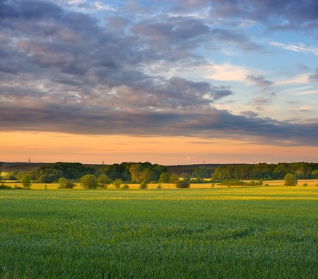 mood: Summer evening of a rural landscape in the middle of germany