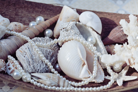perls: a lot of sea shells and perls in art mess close up Stock Photo
