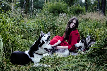 perro asustado: mujer de vestido rojo con lobos de árboles en el bosque, cuento de hadas perro husky Foto de archivo