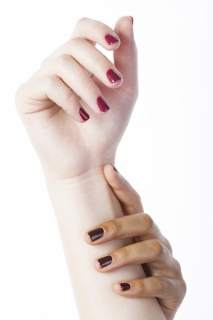 manicured hands: two different nathion manicured hands on white isolated, african with caucasian close up, tann Stock Photo