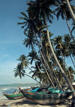 destructed: a lot of fishermens boats at seacoast sunrise horisont sea among palms Stock Photo
