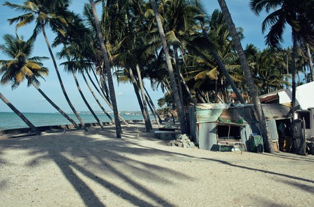 underdeveloped: little vietnamese house on seacoast among palms and sand, poor fisherman home