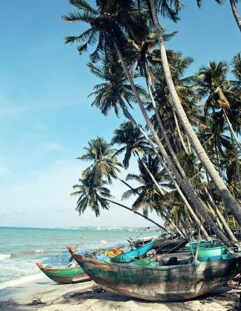 destructed: lot of fishermens boats at seacoast sunrise horisont sea among palms Stock Photo