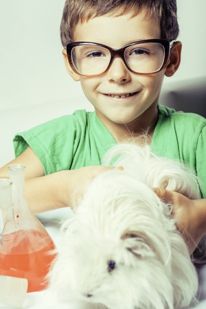 descubridor: little cute boy with medicine glass isolated wearing glasses smiling close up, holding white guinea pig, cavy for science Foto de archivo