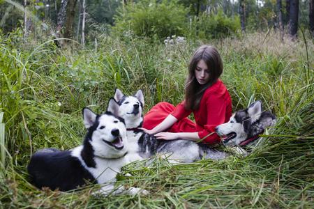 perro asustado: Mujer Mysteus en vestido rojo con lobos árbol, bosque, perros husky misterio retrato