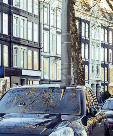 front elevation: european parking, cars on background with Amsterdam facade sunny day