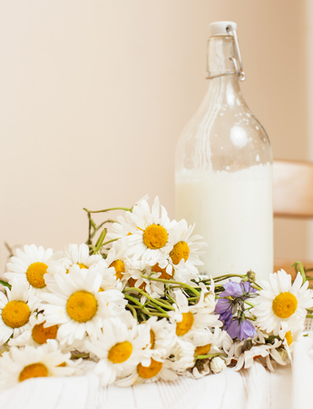 simply: Simply stylish wooden kitchen with bottle of milk and glass on table, summer flowers camomile, healthy foog moring concept close up