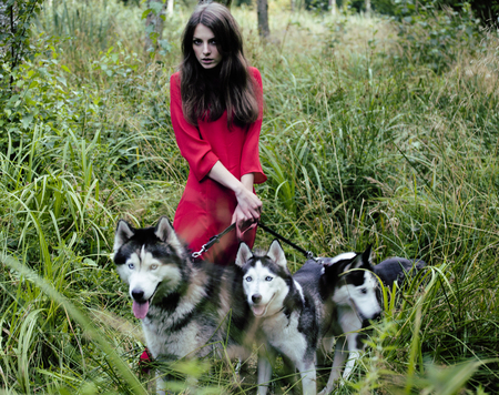 terrified woman: Mysterious woman in red dress with tree wolfs, forest, husky dogs mystery portrait