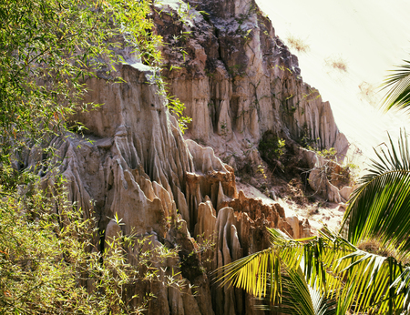 green landscape with palms and white sand rocks, fairy stream vi Stock Photo