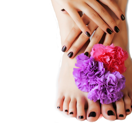 manicure pedicure with flower close up isolated on white perfect shape hands spa salon, modern dark mani pedi concept copyspace