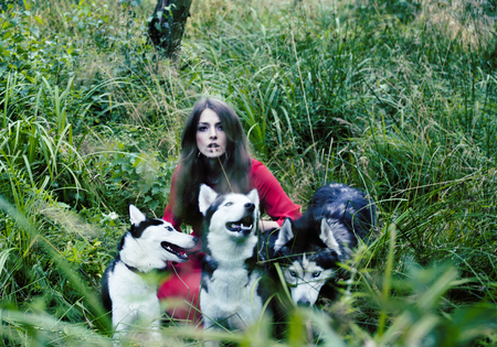 woman in red dress with tree wolfs, forest, husky dogs mystery portrait