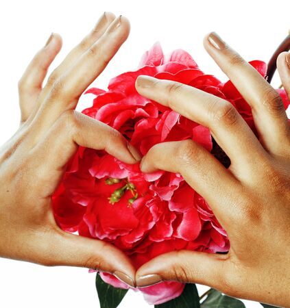 manicure pedicure people hands concept, woman fingers in shape of heart holding pink flowers isolated Imagens