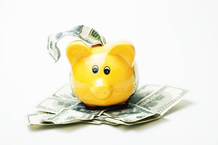 yellow piggy bank with cash dollars, standing in mount of banknotes Stock Photo