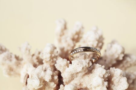 beautiful macro shot of golden wedding ring with sea shell and coral on yellow background Stok Fotoğraf
