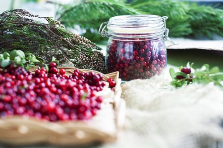 autumn berries on table, lingonberry raw close up Stock Photo