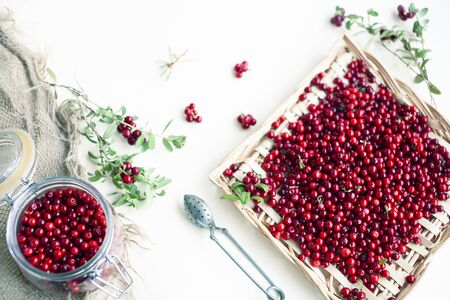 autumn berries on table, lingonberry raw Imagens