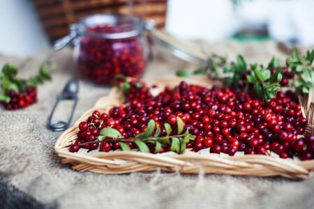 autumn berries on table, lingonberry raw closeup Imagens