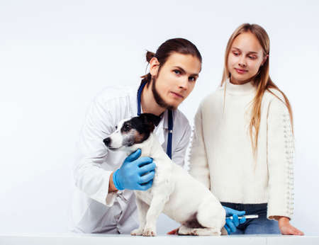 young veterinarian doctor in blue gloves examine little cute dog jack russell isolated on white background with owner blond girl holding it, animal healthcare Stock fotó