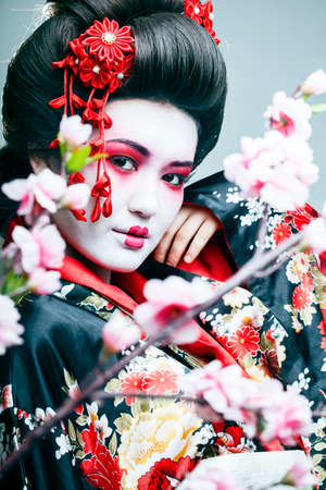 young pretty geisha in black kimono among sakura, asian ethno close up on white background Banco de Imagens