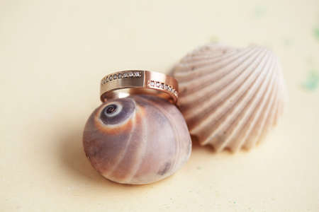 beautiful macro shot of golden wedding ring with sea shell and coral on yellow background Imagens