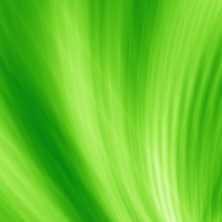Leaf background abstract wave design