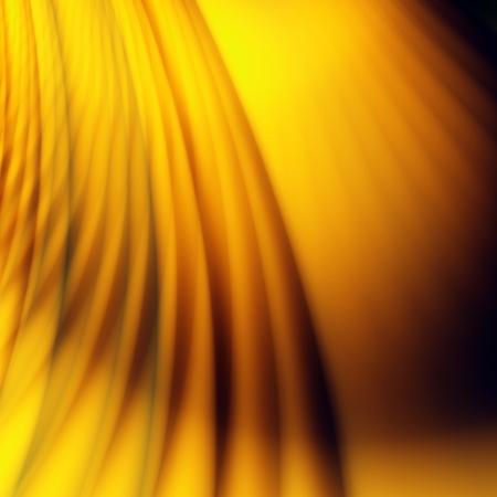 silky velvet: Golden luxury illustration abstract flow power background