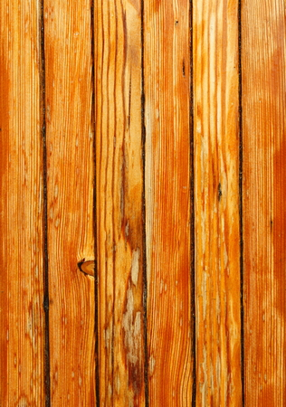 material: Textured material wood pine-tree Stock Photo