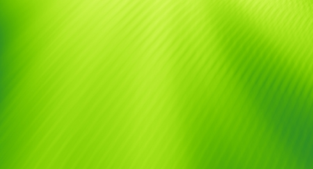 Green abstract background designs texture pattern Stock Photo