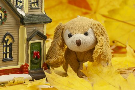Beautiful creative autumn composition. cute soft toy dog. dried bright autumn leaves, small toy house. Close up