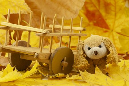 Creative autumn composition. cute soft toy dog. dried bright autumn leaves, Close up Фото со стока