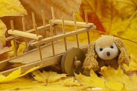Beautiful creative autumn composition. cute soft toy dog. dried bright autumn leaves, Close up Фото со стока