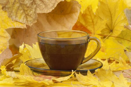 Coffee mug with autumn fall leaves on autumn background. stock photo, close up