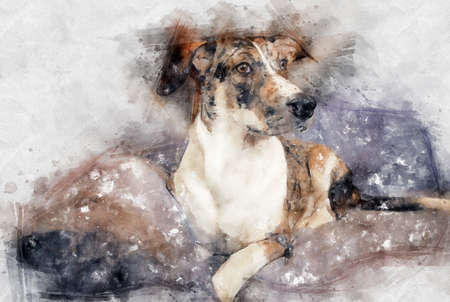 Beautiful watercolor illustration. portrait of cute dog.