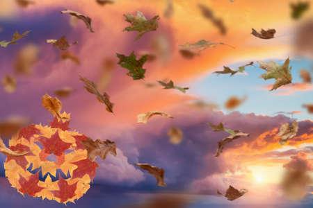 Autumn halloween and fall season holiday. jack o lantern pumpkin made of seasonal leaves.