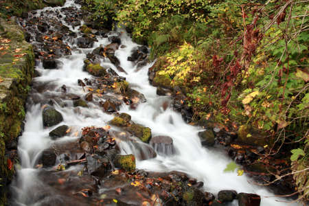 oregon cascades: Scenic Fall stream Stock Photo