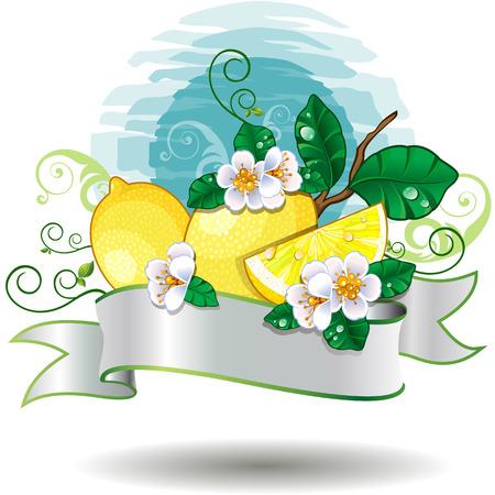 orange peel clove: effetti di limone e le decorazioni banner-trasparenza di fusione e gradiente maglie Vettoriali