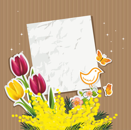 mimosa: card with tulips and mimosa bird resting on cardboard-no transparency no level