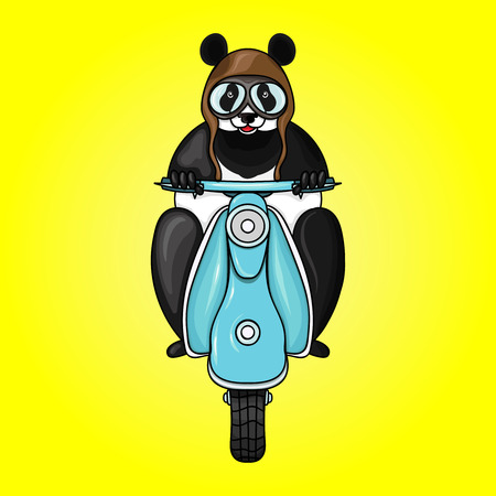 Panda racer in helmet on scooter. Illustration