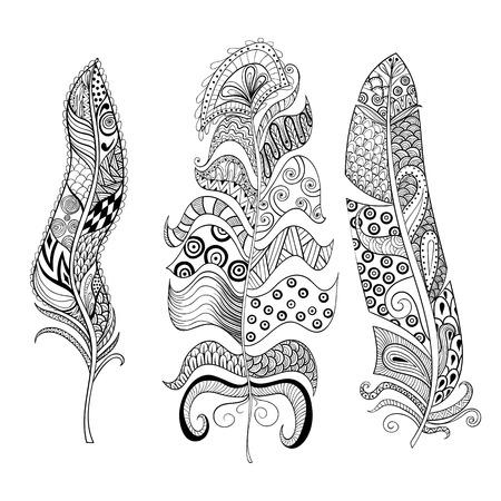 adult: Zentangle stylized elegant feathers set. Hand drawn vintage illustration for adult anti-stress coloring page on white background. Ethnic decorative elements.