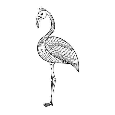 isolated illustartion: Coloring page with Flamingo bird, zentangle illustartion tribal totem bird for adult Coloring books or tattoos with high details isolated on white background. Vector monochrome sketch of exotic bird. Illustration