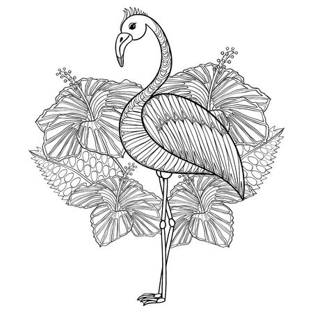 Página para colorear con el flamenco en hibiskus, illustartion zentangle para los libros para colorear para adultos o tatuajes con detalles altos aislados sobre fondo blanco. Ilustración monocromática del dibujo. Ilustración de vector