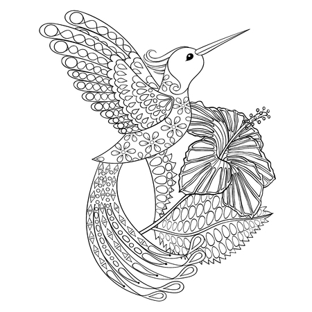 Coloring page with Hummingbird in hibiskus, zentangle illustartion for adult Coloring books or tattoos with high details isolated on white background. Vector monochrome sketch.